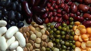 Dieta para prediabetes: alimentos permitidos y que deben evitarse