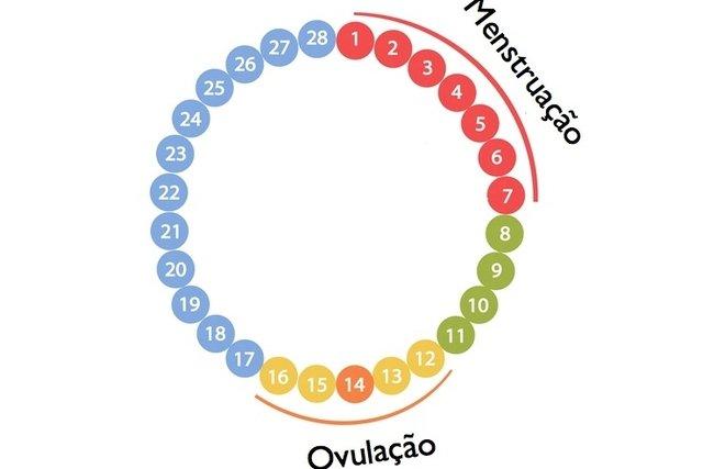 diferença ovulação e dia fertil