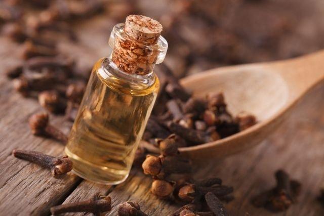 Passar óleo de cravo-da-índia