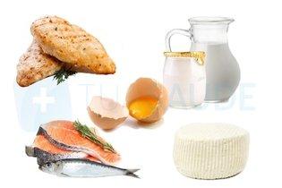 Alimentos permitidos de origem animal