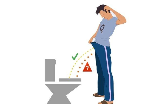 Sintomas de alterações na p´rostata: diminuição da força do jato de urina, dor ou ardor ao urinar