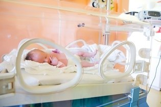 Bebê recém-nascido na incubadora