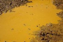 Contaminação por mercúrio em rios