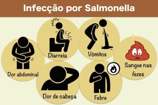 Sintomas de infecção por Salmonella
