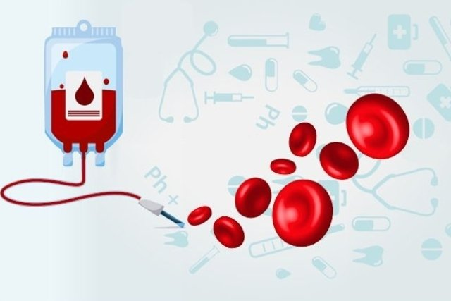 A transfusão sanguínea é a principal forma de tratamento