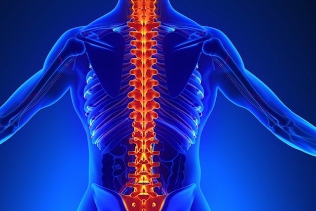 Fratura Vertebral na Osteoporose