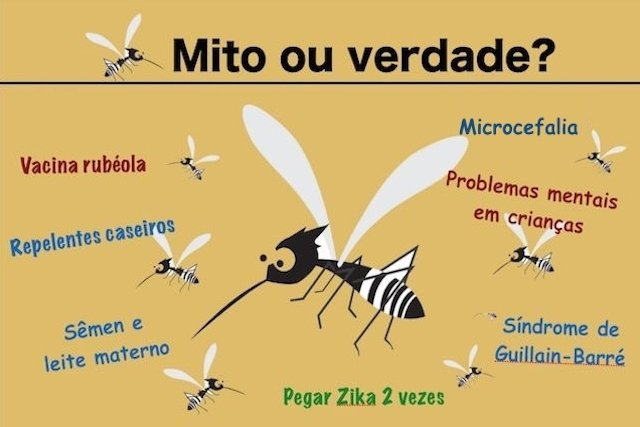 Tudo o que você precisa saber sobre a Zika