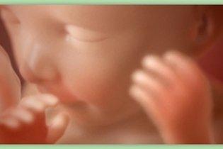 Desenvolvimento do bebê - 22 semanas de gestação