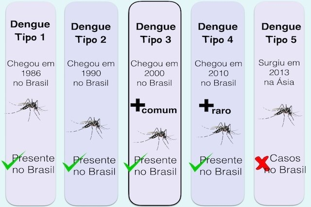 Saiba quais são os diferentes Tipos de Dengue