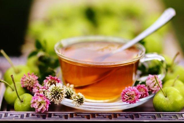 Trevo-dos-prados ajuda a tratar a osteoporose na menopausa
