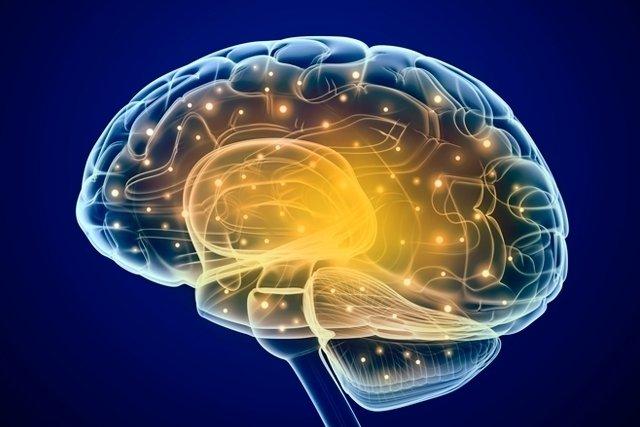 Qual a diferença entre Morte cerebral e Coma