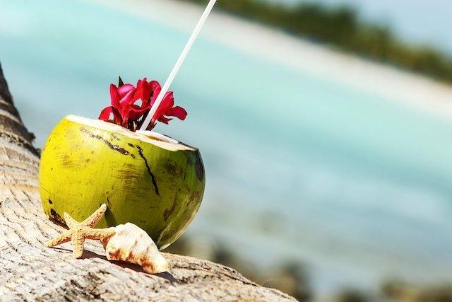 10 bons motivos para tomar Água de Coco