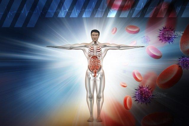 Tratamento para Fortalecer os Ossos e as Articulações