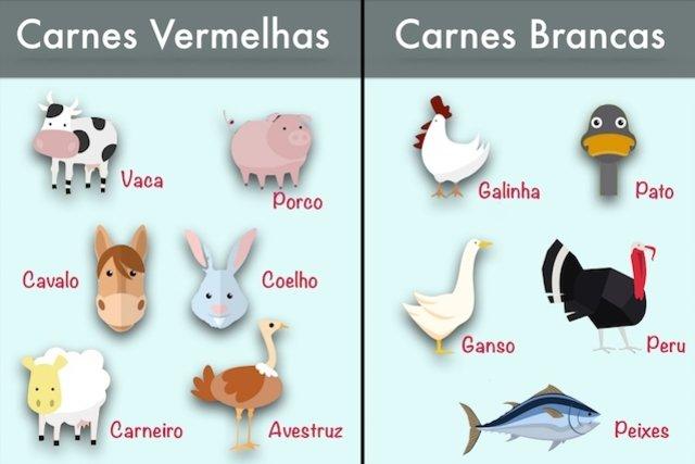 Classificação das carnes