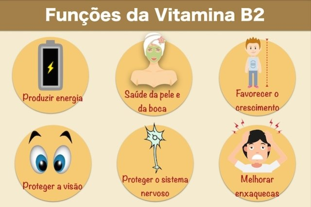 Para que serve a Vitamina B2