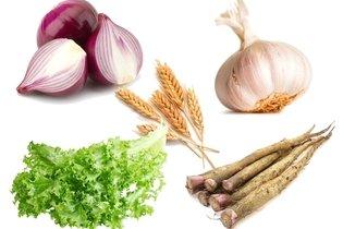 Cebola, alho, trigo, chicória e bardana