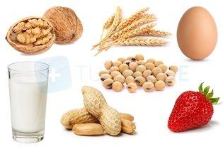 Atopica dermatitis alimentos para