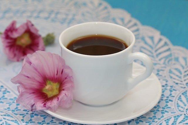 3 Melhores Chás para Bronquite