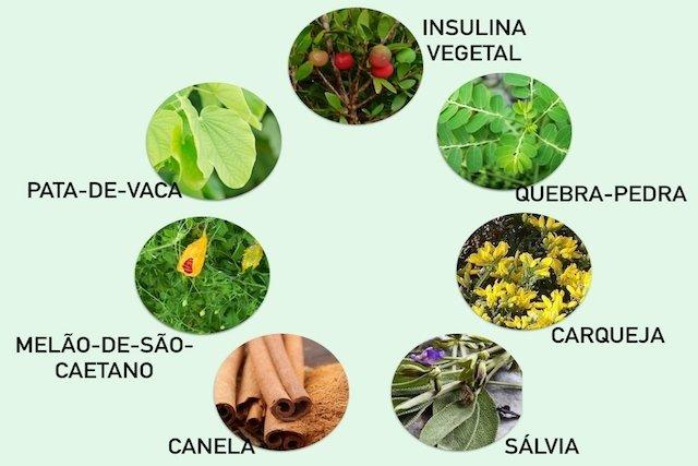 7 remédios naturais para baixar a glicose