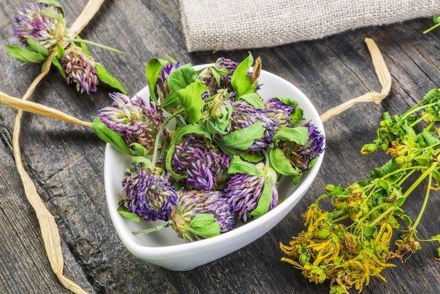 3 Soluções caseiras para Menopausa