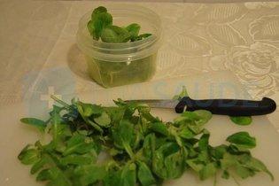 Lavar e cortar as ervas