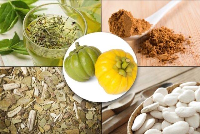 5 Plantas Medicinais para Emagrecer