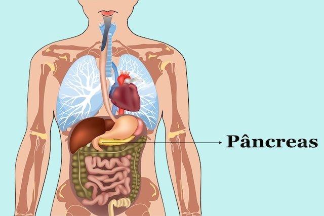 Onde se localiza o Pâncreas