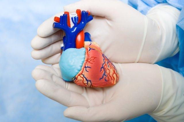 Como é feita a cirurgia para sopro no coração e quais os riscos