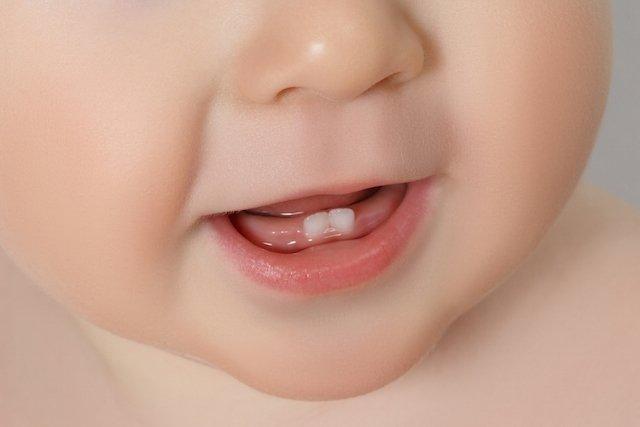 Primeiros dentes do bebê: quando nascem e quantos são