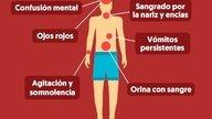 5 Complicaciones que puede causar el dengue