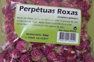 Para que serve o chá de Perpétua Roxa