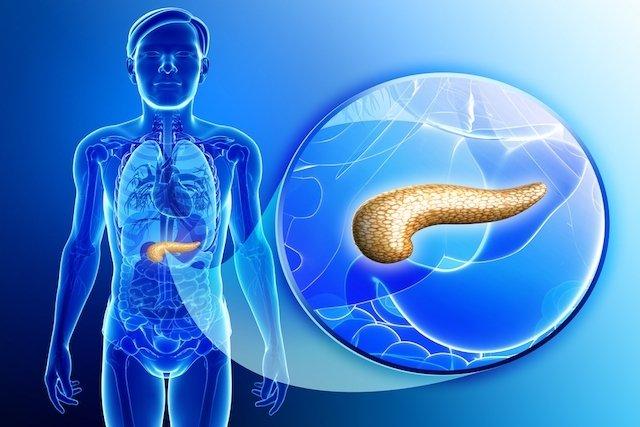 Localización del páncreas