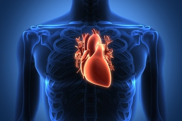 Dor no coração: 8 possíveis causas e o que fazer