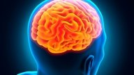 Síndrome de Guillain-Barré: Causas, síntomas y tratamiento