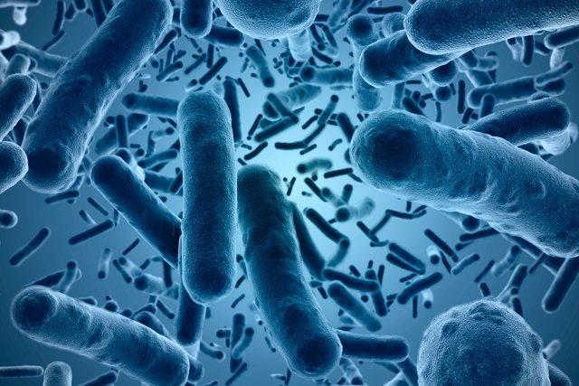 Tudo sobre as Infecções Sexualmente Transmissíveis (IST)