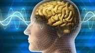 Saiba identificar os Sintomas da Epilepsia