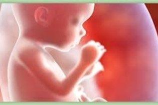 Desenvolvimento do bebê - 18 semanas de gestação