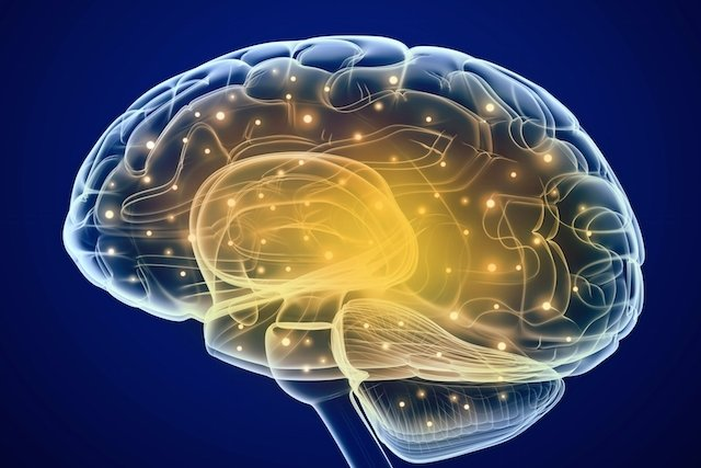 O que é Retardo mental, causas, características e expectativa de vida