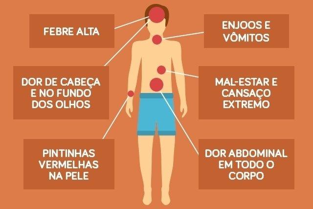 Dengue tipo 4: Sintomas e Tratamento
