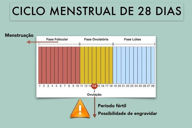 Entenda como funciona o Ciclo Menstrual