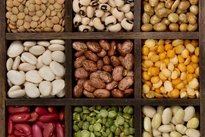 Comer proteínas de origem vegetal