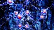 Síndrome de West: o que é, sintomas e tratamento