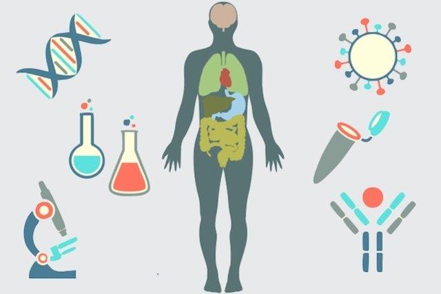 Resultado de imagem para Hospital do Câncer Anchieta investe em tratamento com imunoterapia