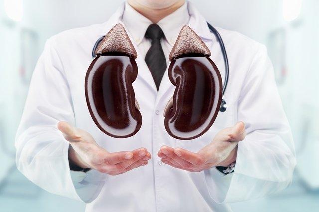 Entenda o que é insuficiência renal aguda e crônica, sintomas e tratamento