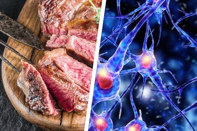 Como é transmitida a Doença da Vaca Louca em humanos