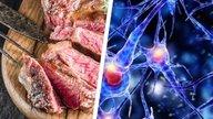 Doença da vaca louca: o que é, sintomas e transmissão