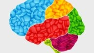 Alzheimer: doença do esquecimento
