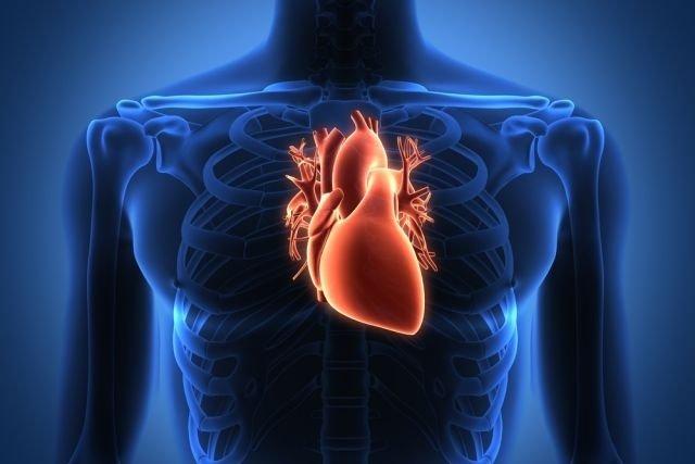 Conheça a Doença que deixa o Coração Rígido