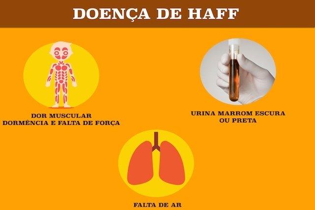 Como identificar e tratar a Doença de Haff