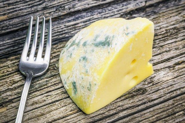 Foto representativa de um queijo estragado